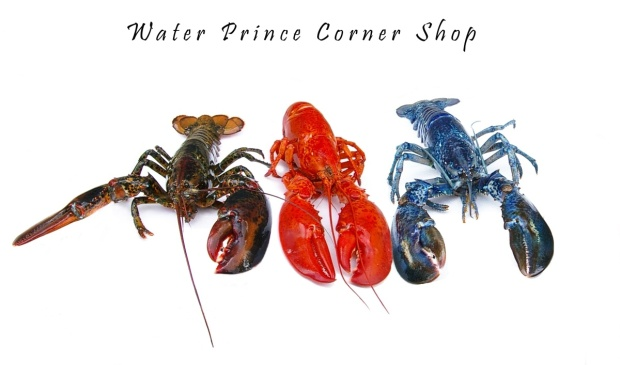 3 different coloured lobsters